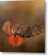 Airbrakes Metal Print