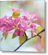 Airy Spring 1 Metal Print