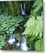 Akaka Falls Stream Metal Print
