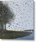 Alabama Rain Metal Print