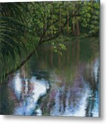 Alafia River Reflection Metal Print