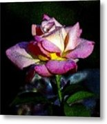 Alan Rose Metal Print