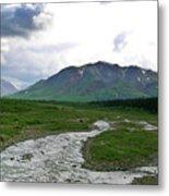 Alaska Denali National Park Landscape 1 Metal Print