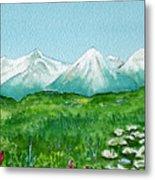 Alaska Splendor Metal Print