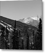 Alaska Wilderness Bw Metal Print