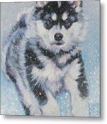 alaskan Malamute pup in snow Metal Print