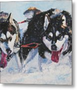 Alaskan Malamute Strong And Steady Metal Print