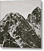 Alaskan Peaks Metal Print
