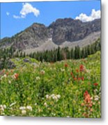 Albion Summer Flowers Metal Print
