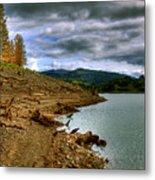Alder Lake Metal Print