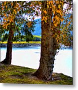 Alder Lake In The Fall Metal Print