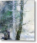 Alders And Cedar Metal Print
