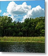 Alexander Creek Metal Print