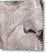 Alexander Hamilton Metal Print