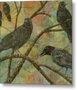 Alex's Crows Metal Print