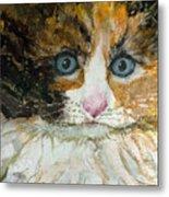 Ali Cat 1 Metal Print