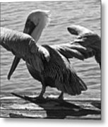 All Clear For Take Off Metal Print