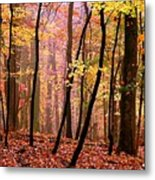 All Fall Metal Print