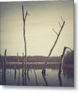 All Is Calm At Green Bottom Metal Print