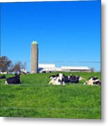 All Is Well In The Farmland Metal Print