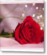All Occasion Rose Metal Print