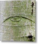 All-seeing Eye Of God On A Tree Bark Metal Print