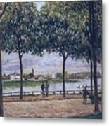Alley Of Chestnut Trees Metal Print