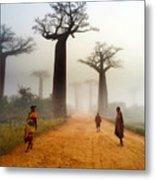 Alley Of The Baobab Metal Print