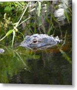 Alligator Hunting Metal Print