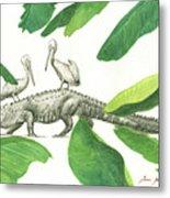 Alligator With Pelicans Metal Print