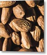 Almond Nuts Metal Print
