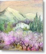 Almond Trees In Altea La Vieja Metal Print