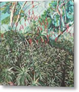 Aloe Garden Vumba Metal Print