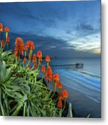 Aloe Vera Bloom Metal Print