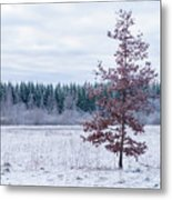 Alone In Red Metal Print