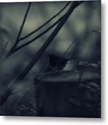 Alone In The Darkness Metal Print