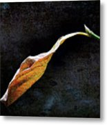 Alone In The Fall Metal Print