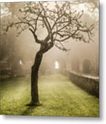 Alone In The Fog Metal Print