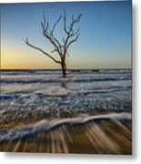 Alone In The Water Metal Print
