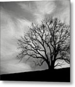 Alone On A Hill In Black And White Metal Print