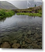 Alone With Nature Metal Print