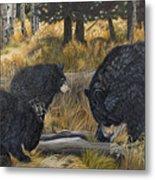 Along An Autumn Path - Black Bear With Cubs Metal Print