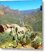 Along The Apache Trail Metal Print