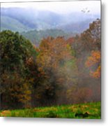 Along The Brp Metal Print