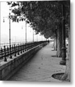 Along The Danube Metal Print