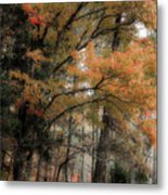 Along The Edge Of October Metal Print