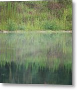 Along The Edge Of The Pond Metal Print
