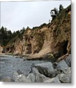 Along The Oregon Coast  Metal Print