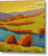 Along The River In Steamboat Springs II Metal Print