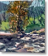 Along The Russian River Metal Print
